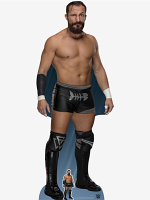 WWE Bobby Fish World Wrestling Entertainment WWE