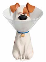Max the Dog wearing a Cone Collar Cardboard Cutout
