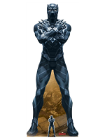 Black Panther T'Challa King of Wakanda