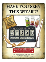 Gold Harry Potter Wanted Poster as Selfie Frame With Props