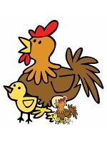 Cute Chicken with Chicks Farmyard Animal