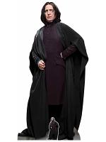Professor Snape Harry Potter Character