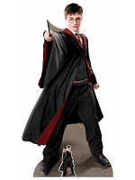 Harry Potter Quidditch Captain Cardboard Cutout