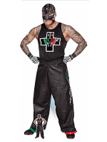 Rey Mysterio Hips WWE Life-size Cardboard Cutout