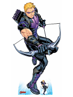 Hawkeye Bow and Arrow