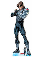 Winter Soldier Secret Legend