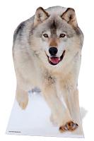 Wolf - Cardboard Cutout