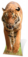 Tiger Cardboard Cut-out