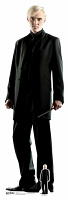 Draco Malfoy (Harry Potter) - Cardboard Cutout