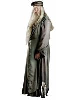 Albus Dumbledore (Harry Potter) Cardboard Cutout with Mini Cutout