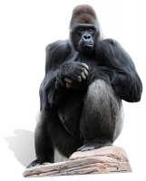 Gorilla Cardboard Cut-out