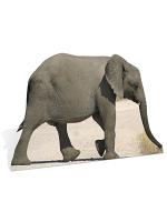 Baby African Elephant Cardboard Cutout