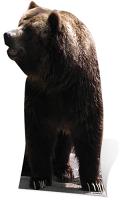 Bear - Cardboard Cutout
