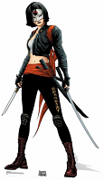 Katana (Suicide Squad Comic Artwork) Cutout