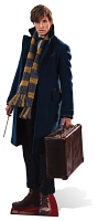Newt Scamander Fantastic Beasts Eddie Redmayne Cardboard Cutout