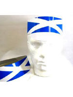 Scotland Flag Cardboard Hat