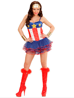Super Hero Girl Costume