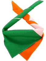 Irish Flag Bandanna