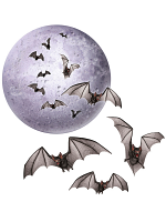 "Moon & Bat Cutouts 8½""-18"""