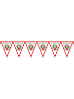 Mexico Football Bunting