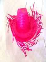 Caribbean Straw Hat In Bright Pink (1)