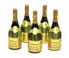 Champagne Bubbles Mini