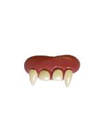 Teeth Vampire